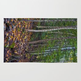 Mt Revelstoke Trail II Rug