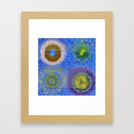 Unparalysed Unconcealed Flowers  ID:16165-032529-06851 Framed Art Print
