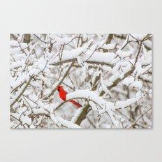 April Snowfall I Canvas Print