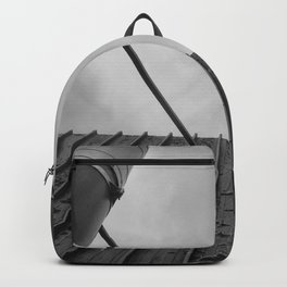 Twin Chimneys Backpack