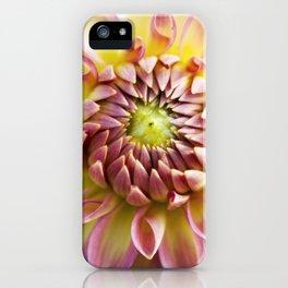 Joie de Vivre- Pink Dahlia iPhone Case