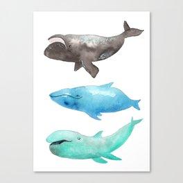 They're a little weird Canvas Print