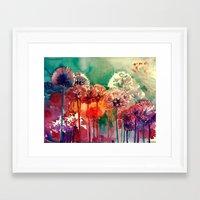takmaj Framed Art Prints featuring Allium 2 by takmaj