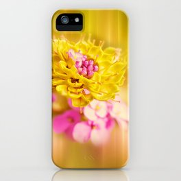 The Sound of Light and Color iPhone Case