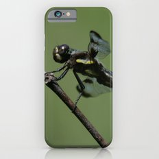 Twelve-spotted Skimmer iPhone 6s Slim Case