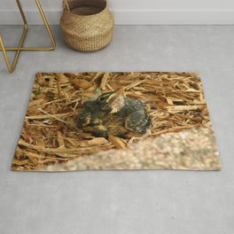 Scout Rug