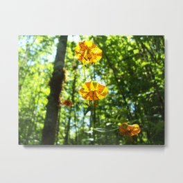 Fire Lily Forest Metal Print