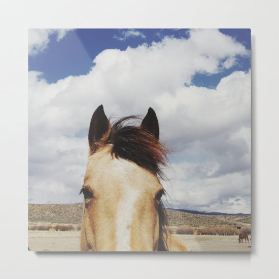 Cloudy Horse Head Metal Print