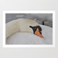 cuddle Art Prints featuring Cuddle Doon! by Valerie Paterson