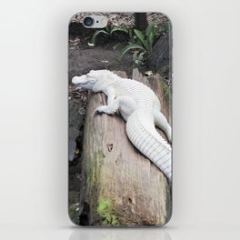 Albino Alligator iPhone Skin
