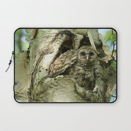 Barred owl baby camouflage Laptop Sleeve