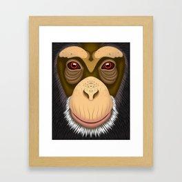 Old Chimpanzee Framed Art Print