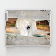 A Glimpse Laptop & iPad Skin