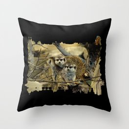 African Meerkat Trio Throw Pillow