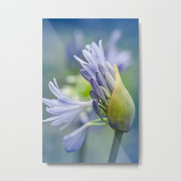 Love Flower Metal Print