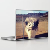ostrich Laptop & iPad Skins featuring OSTRICH by Kaitlin Bloom