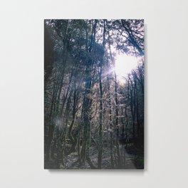 Cradle Mountain Sunshine Metal Print