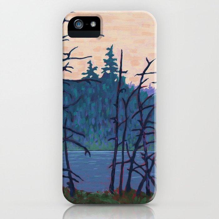Algonquin Wetland, Algonquin Park iPhone Case