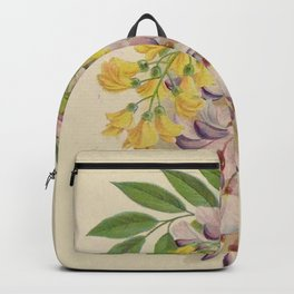 Seed Catalog Garden Floral Fruit Laburnum Or Golden Chain Cytisus Purple Wistaria Chinese White Wistaria Backpack