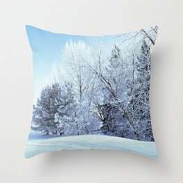Frosty Morning Throw Pillow