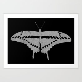 Textured butterfly Art Print
