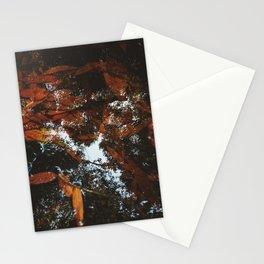 September's Reflection Stationery Cards