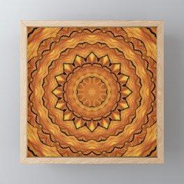 honey kaleidoscope Framed Mini Art Print