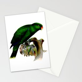 Eclectus Parrot Stationery Cards
