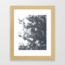 blossom away Framed Art Print