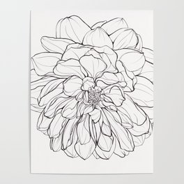Ink Illustration of a Dahlia Poster