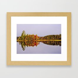 Mirror Of Beauty Framed Art Print