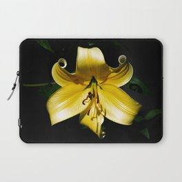 Pale Yellow Lily with a Dark Background Laptop Sleeve
