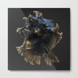 A word in your shell-like Metal Print