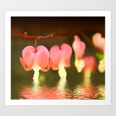 My Bleeding Heart Weeps Art Print