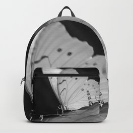 Papillon B/W Backpack