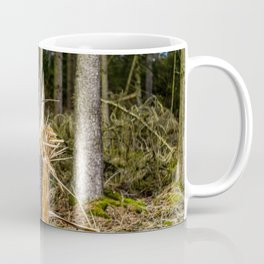 Fallen And Broken Trees After Storm Victoria February 2020 Möhne Forest 7 Coffee Mug