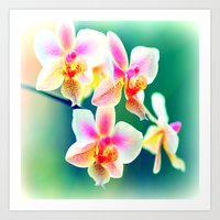 orchid Art Prints featuring orchid by haroulita