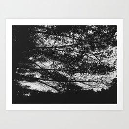 Autumn 3 Art Print