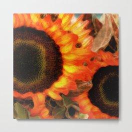 Sunflower Sizzle Metal Print