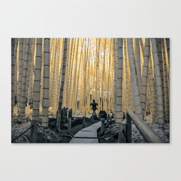 Bamboo Temple 2 Canvas Print