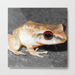 Watercolor Coqui Frog Metal Print
