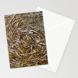 Rolled Hay Stationery Cards