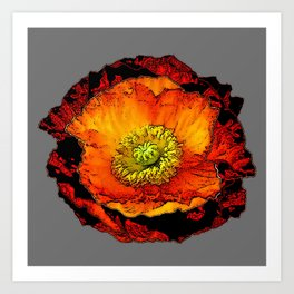 ARTISTIC ORANGE POPPY FLOWER DRAWING ON GREY Art Print