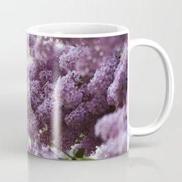 Violet Syringa vulgaris lila Coffee Mug
