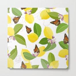 Meyer Lemons and Monarch Butterflies Metal Print