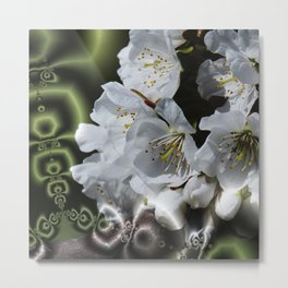 apple blossom pattern Metal Print