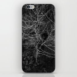 Tasmania Trees From Above iPhone Skin