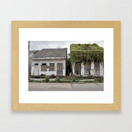 Living Roof - New Orleans, Louisiana Framed Art Print