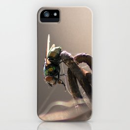 Chains and Fly iPhone Case