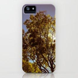 Forest Sun iPhone Case